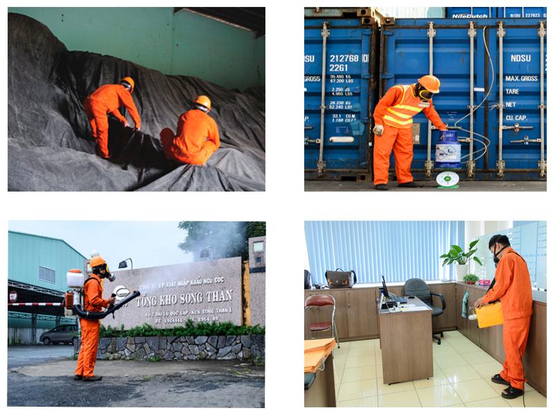 Một số hình ảnh hùn trùng hàng hóa xuất khẩu